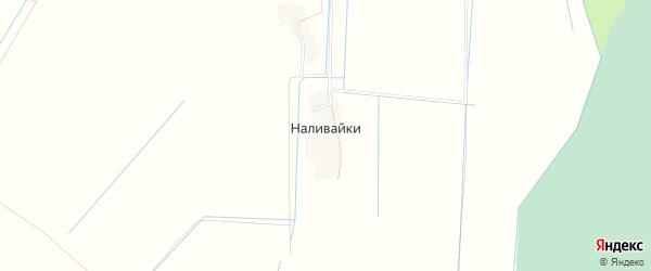 Карта деревни Наливайки в Псковской области с улицами и номерами домов