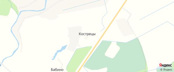 Карта деревни Кострецы в Псковской области с улицами и номерами домов