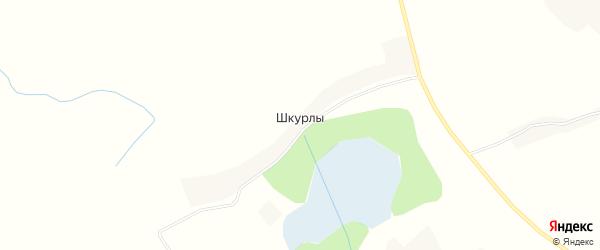 Карта деревни Шкурлы в Псковской области с улицами и номерами домов