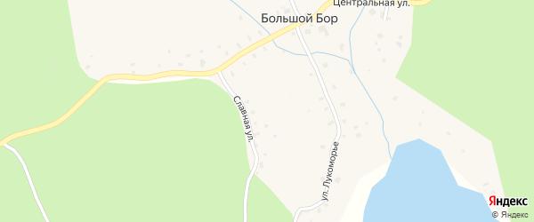 Большая Боровая улица на карте поселка Большого Бора Ленинградской области с номерами домов