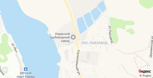 Госпитальная улица в Ивангороде с номерами домов на карте. Спутник и схема онлайн