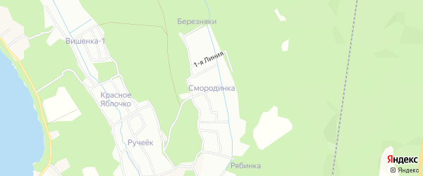 Карта поселка СТ Смородинки города Приморска в Ленинградской области с улицами и номерами домов