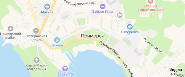 Вязовский переулок на карте Приморска с номерами домов
