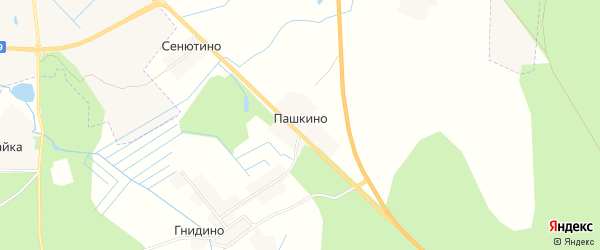 Карта деревни Пашкино в Псковской области с улицами и номерами домов