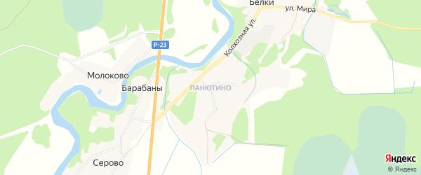 Карта деревни Панютина в Псковской области с улицами и номерами домов