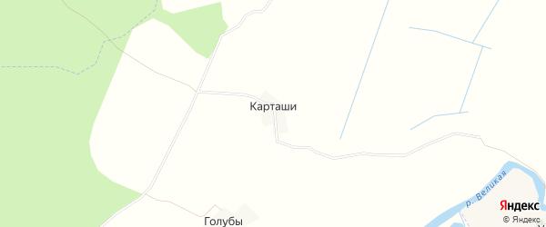 Карта деревни Карташи в Псковской области с улицами и номерами домов