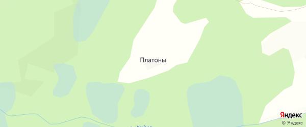 Карта деревни Платоны в Псковской области с улицами и номерами домов