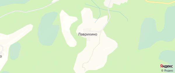 Карта деревни Лаврихино в Псковской области с улицами и номерами домов