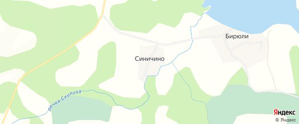 Карта деревни Синичино в Псковской области с улицами и номерами домов