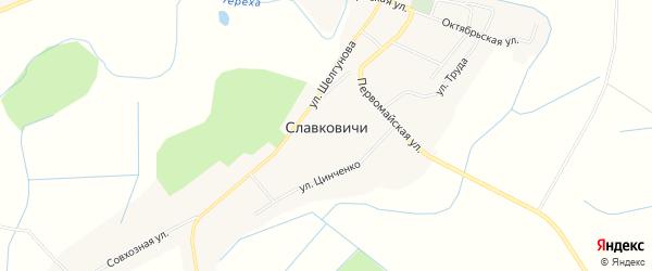 Карта села Славковичей в Псковской области с улицами и номерами домов
