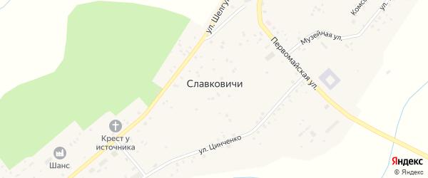 Улица Новый Переулок на карте села Славковичей Псковской области с номерами домов