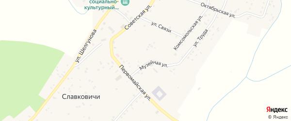 Музейная улица на карте села Славковичей Псковской области с номерами домов