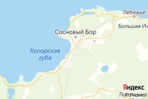 Карта г. Сосновый Бор Ленинградская область