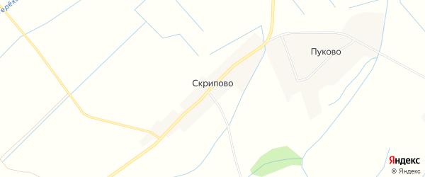 Карта деревни Скрипово в Псковской области с улицами и номерами домов