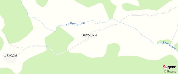 Карта деревни Ветошки в Псковской области с улицами и номерами домов