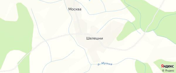 Карта деревни Шелешни в Псковской области с улицами и номерами домов