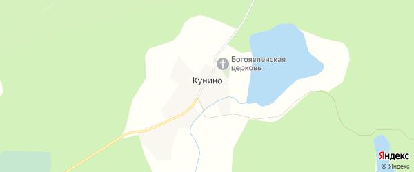 Карта деревни Кунино в Псковской области с улицами и номерами домов