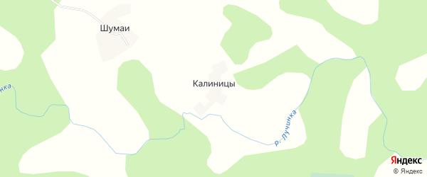 Карта деревни Калиницы в Псковской области с улицами и номерами домов