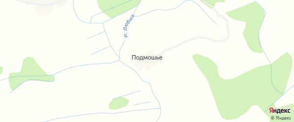 Карта деревни Подмошьего в Псковской области с улицами и номерами домов