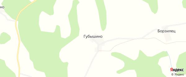 Карта деревни Губышино в Псковской области с улицами и номерами домов