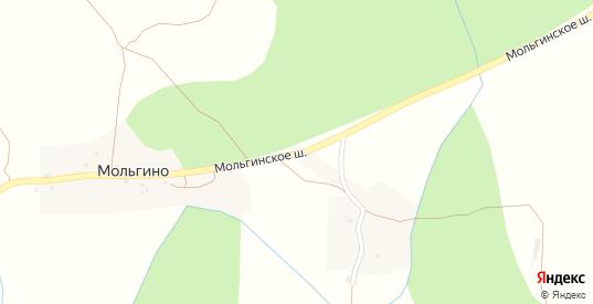 Улица Мольгинское шоссе в Пустошке с номерами домов на карте. Спутник и схема онлайн
