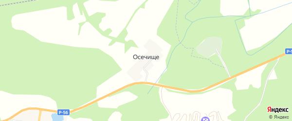 Карта деревни Осечище в Псковской области с улицами и номерами домов