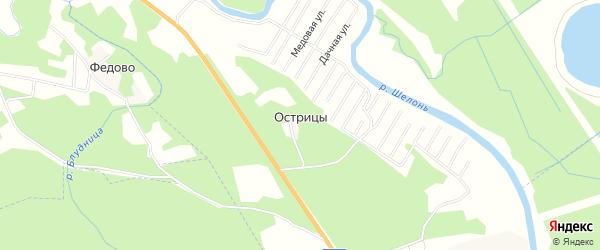 Карта деревни Острицы в Псковской области с улицами и номерами домов