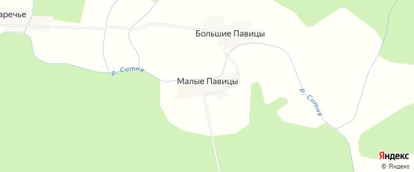 Карта деревни Малых Павицы в Псковской области с улицами и номерами домов