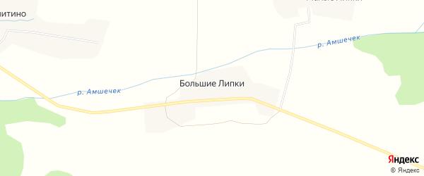 Карта деревни Большие Липки в Псковской области с улицами и номерами домов