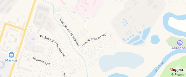 Наплатинский переулок на карте Луги с номерами домов