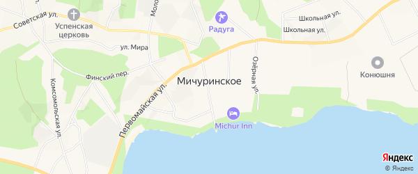 Карта поселка Мичуринского в Ленинградской области с улицами и номерами домов