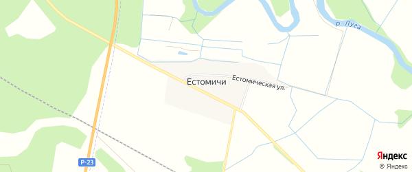 Карта деревни Естомичей в Ленинградской области с улицами и номерами домов