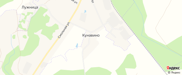 Карта деревни Кунавино в Псковской области с улицами и номерами домов