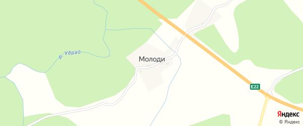 Родниковая улица на карте деревни Молоди Псковской области с номерами домов