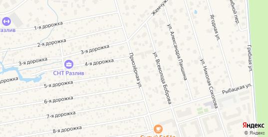 Приозерная улица в Сестрорецке с номерами домов на карте. Спутник и схема онлайн