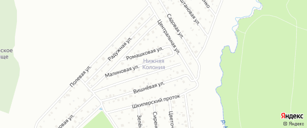 Малый проспект на карте территории СНТ Нижняя Колония Ленинградской области с номерами домов