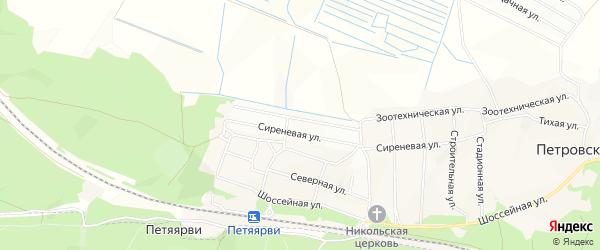 Карта Массива Петровского Петровского садового некоммерческого товарищества в Ленинградской области с улицами и номерами домов