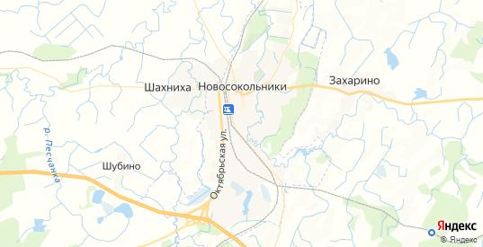 Карта Новосокольников с улицами и домами подробная. Показать со спутника номера домов онлайн