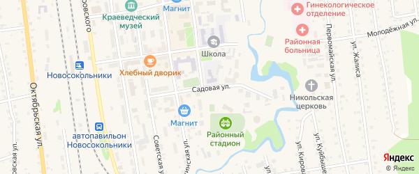 Садовая улица на карте Новосокольников с номерами домов