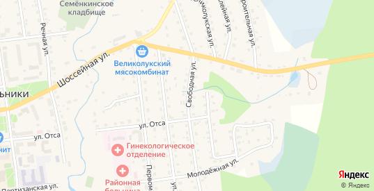 Свободная улица в Новосокольниках с номерами домов на карте. Спутник и схема онлайн