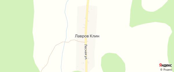 Новая улица на карте деревни Клин (Горский с/с) Новгородской области с номерами домов