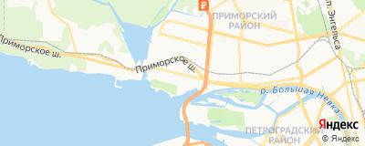 Даметкина Ирина Анатольевна, адрес работы: г Санкт-Петербург, ул Савушкина, д 133 к 1