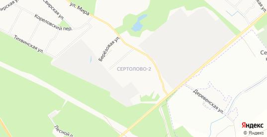 Территория ДНП Петровское на карте микрорайона Сертолова-2 с номерами домов