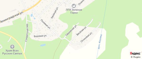 Овражная улица на карте поселка Сосново Ленинградской области с номерами домов