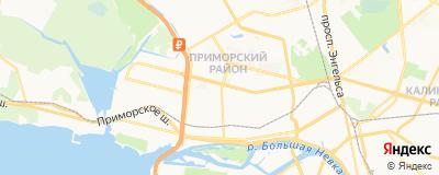 Елина Татьяна Юрьевна, адрес работы: г Санкт-Петербург, ул Гаккелевская, д 20 к 1