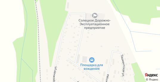 Улица Мелиораторов в Сольцах с номерами домов на карте. Спутник и схема онлайн