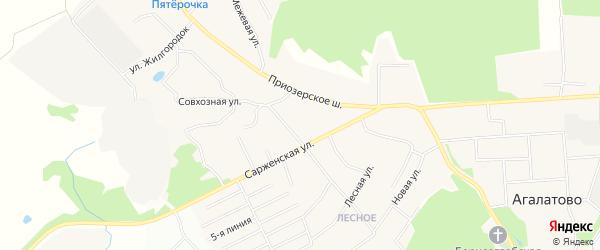 Карта деревни Агалатово в Ленинградской области с улицами и номерами домов