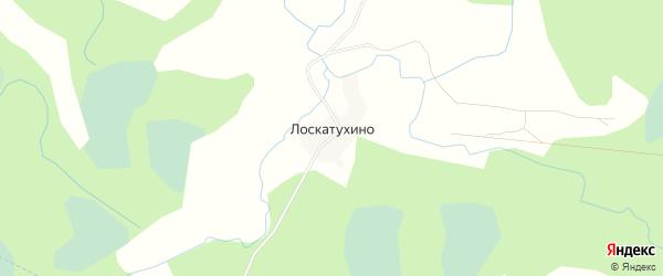 Карта деревни Лоскатухино в Псковской области с улицами и номерами домов