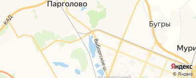 Шипилов Владимир Георгиевич, адрес работы: г Санкт-Петербург, ш Выборгское, д 27 к 3