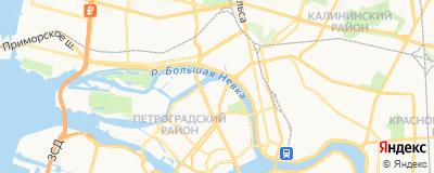 Чомский Александр Николаевич, адрес работы: г Санкт-Петербург, ул Академика Павлова, д 12